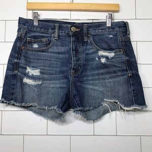 American eagle button fly distressed shorts